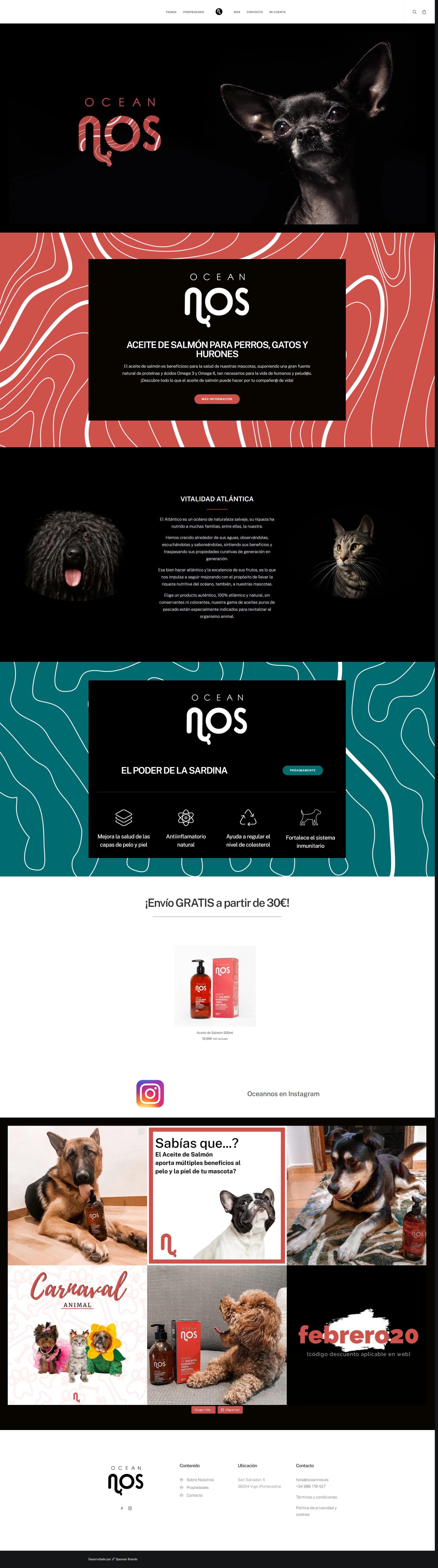 diseño web comercio electronico