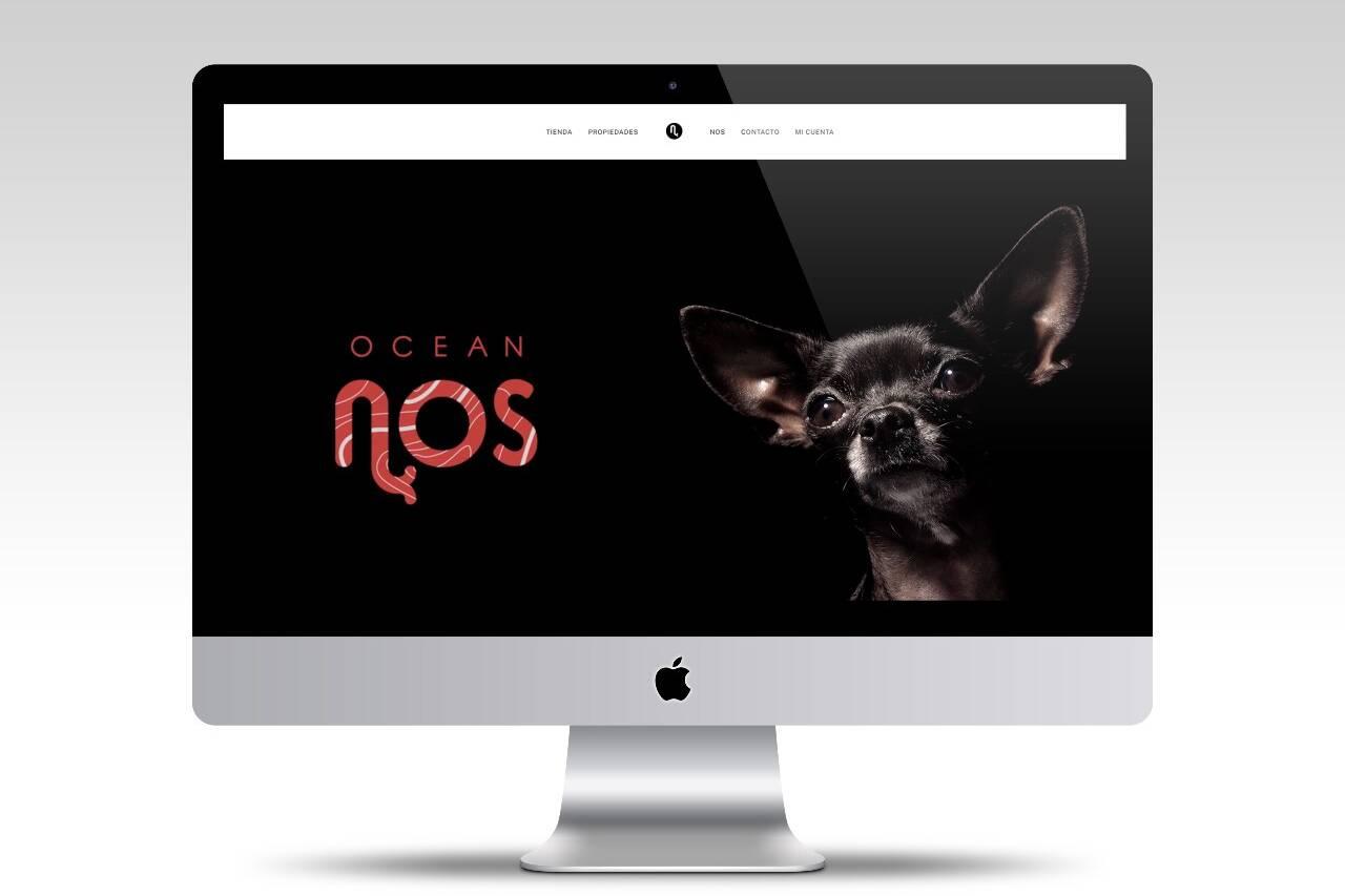 diseño de pagina web para tienda online